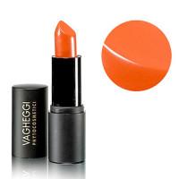 Vagheggi Inka Inki Nutricolor Lipstick Huulipuna Sävy 50 4,5 g